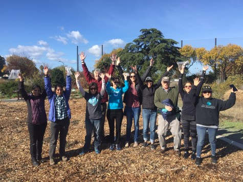 Volunteers with the California office helping to plant wildflowers with the Guadalupe River Park Conservancy