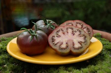 sliced black tomatoes