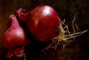 Red Onion Still Life