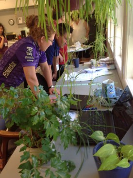 LDM participants wade through a jungle of new ideas