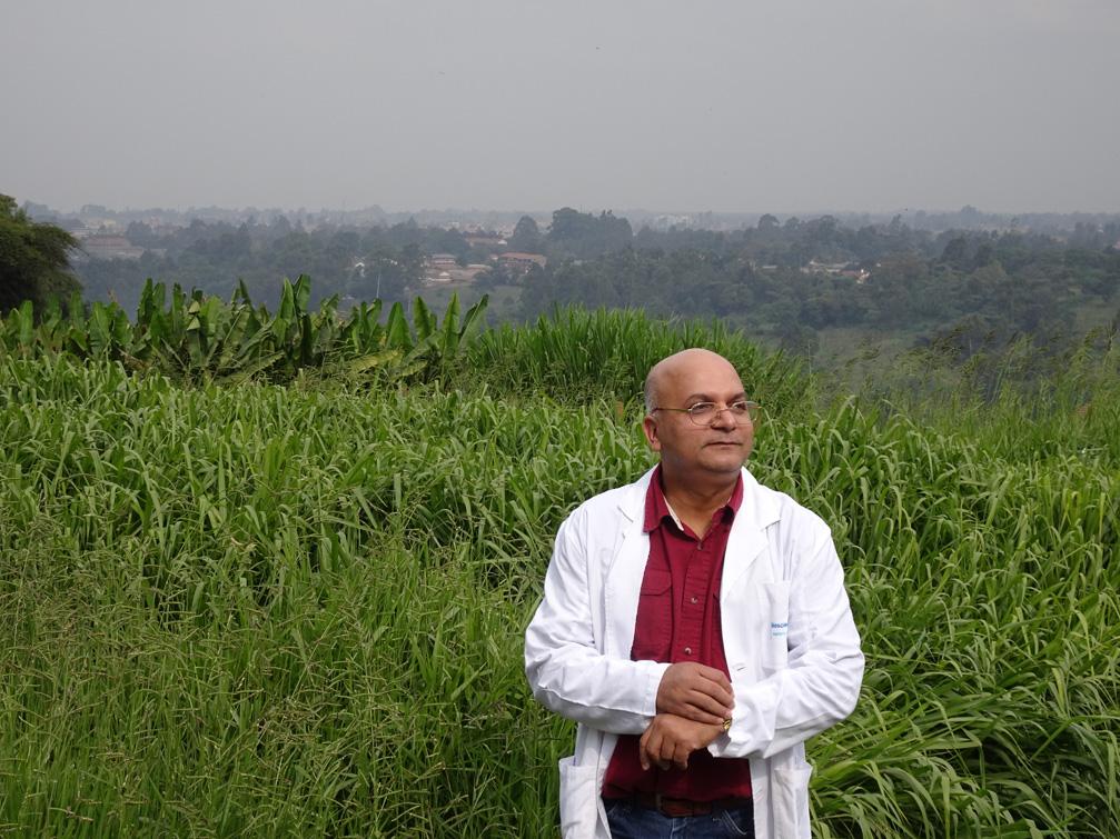 Dr. Sita Ghimere with brachiaria grasses