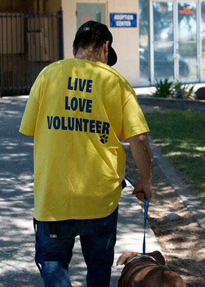Volunteers Bathing Dog