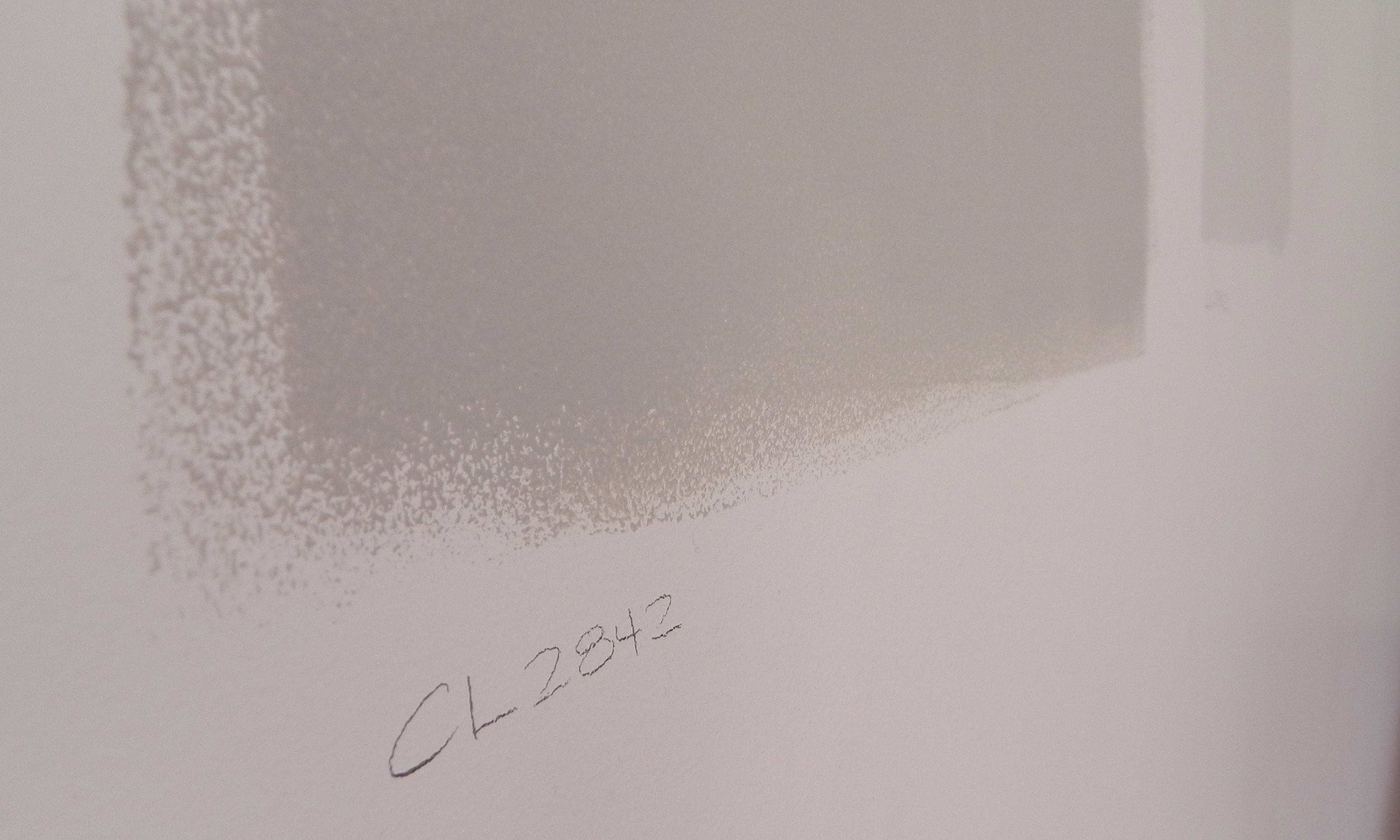CCSRtip Tuesday – Paint Pots