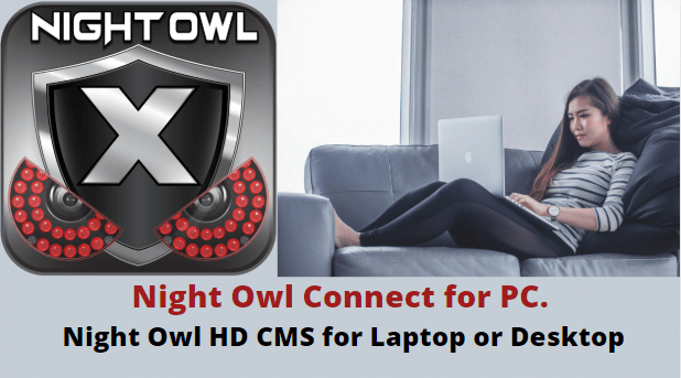 night owl connect for pc