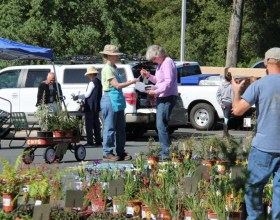 Third Annual Native Plant Sale a Big Success