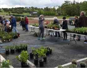 Saturday's Native Plant Sale a Success