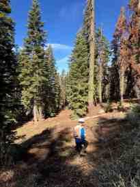 John Q. Walking Through Forest