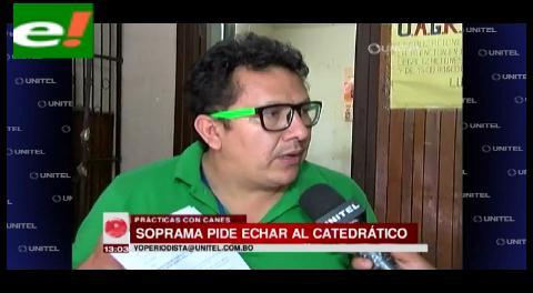 Soprama pide la destitución de catedrático que hacía prácticas en perros vivos