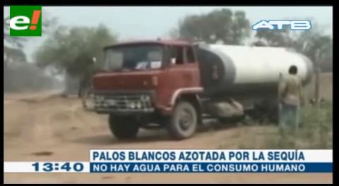"""""""Palos Blancos"""" azotada por la sequía"""
