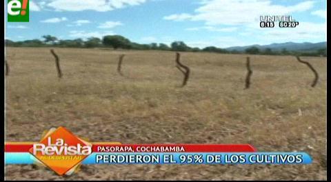 La sequía afecta la zona sur de Cochabamba