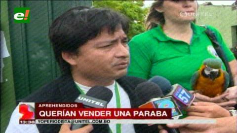 Gobernación de Santa Cruz abre primer caso de tráfico de animales silvestres
