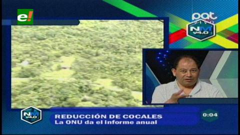 Ministro Romero cree que se bajará a 20 mil las hectáreas de coca erradicadas hasta el fin del 2014