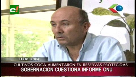 Gobernación de Santa Cruz critica informe de la ONUDC sobre la coca