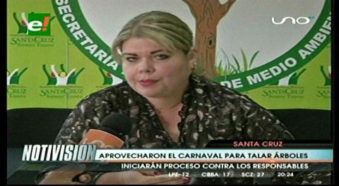 Alcaldía cruceña asegura que no se autorizó talar árboles