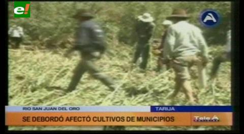 Tarija: Municipio de Yunchará sufre por el desborde del río San Juan del Oro
