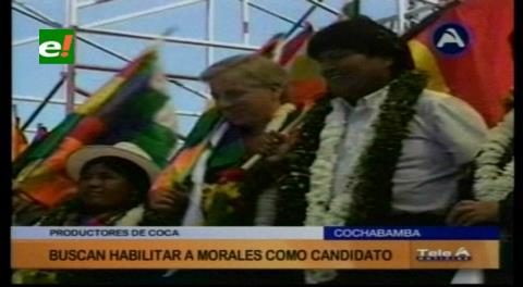 Cocaleros buscan habilitar a Evo Morales como candidato para el 2019