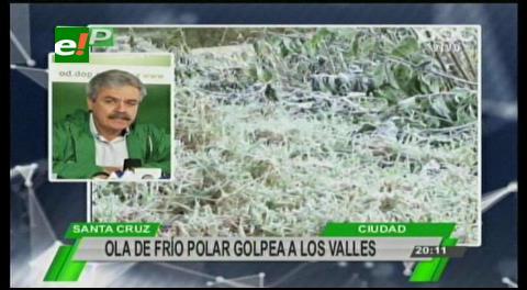 Gobernación cruceña alerta a productores de los valles de posibles heladas