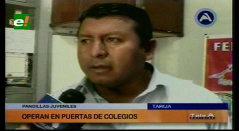 Fedjuve revela que en Tarija operan unas 18 pandillas