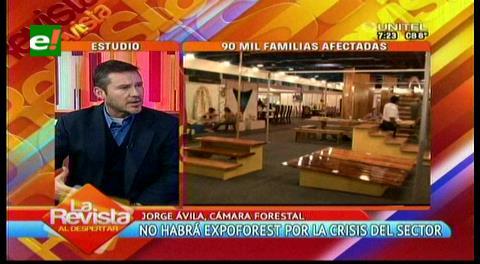 La Feria Expoforest es cancelada por la crisis en el sector