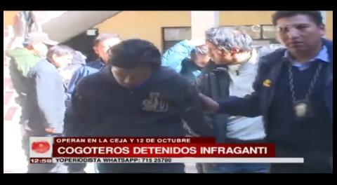 Policía logra capturar a dos bandas de cogoteros que operaban en El Alto