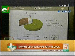 UNODC: Cultivos de coca se redujeron en un 7% en el 2012
