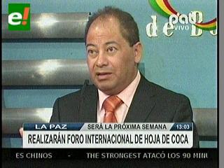 Bolivia celebrará foro internacional para revalorizar hoja de coca