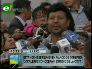 MAS defiende cultivo de 20 mil Has de coca
