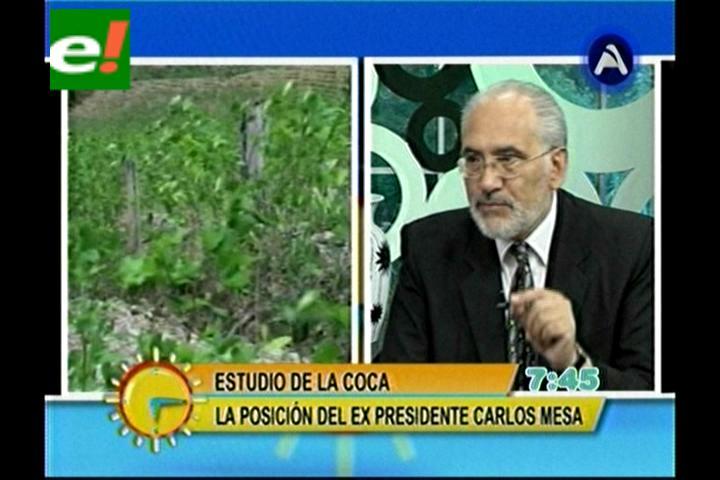 Mesa le recuerda a Evo que tiene el deber de reducir los cultivos de coca