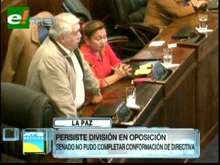 División en la oposición impidió conformar la Directiva Camaral en el Senado