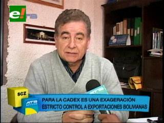 Cadex ve como una exageración el estricto control a las exportaciones bolivianas en Chile