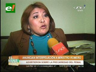 Anuncian interpelación al Ministro de Gobierno por masacre en Palmasola
