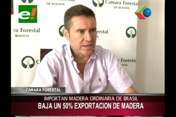 Cámara Forestal: Bajo la exportación de madera en un 50%