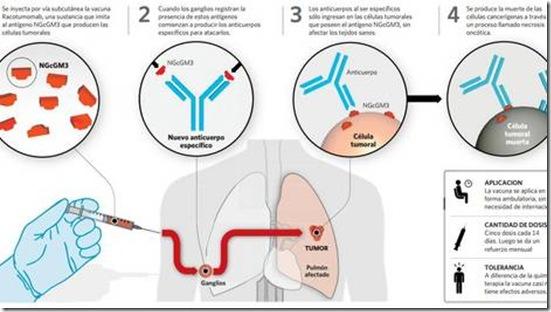 indicada-pacientes-pequenas-estadios-avanzados_CLAIMA20130531_0106_17