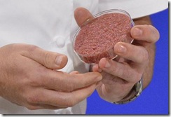 In-vitro-burger2-800x544