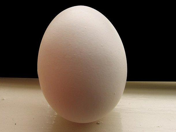 Día Mundial del Huevo: ¿Por qué es bueno consumir este alimento?