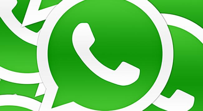 cuerpo whatsapp conex ios android