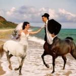wtf-wedding-31