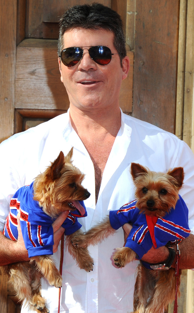 rs_634x1024-140409131450-634.simon-cowell-dogs.ls.4914