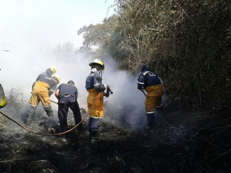 28 quemas de pastizales fueron atendidas este mes