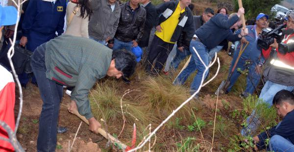 Evo Morales plantó 11 árboles en la comunidad de San Andrés en Tarija