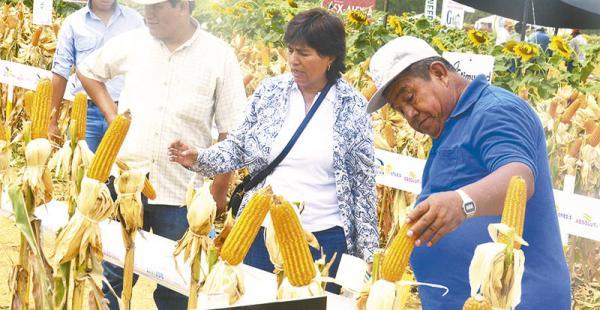 Se calcula que asistieron más de  18.000 personas al evento agrícola