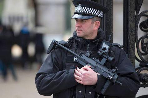 Las fuerzas de seguridad del Reino Unido mantuvieron activas durante 25 años operaciones en las que miembros de la policía iniciaron relaciones amorosas con activistas medioambientales y políticas