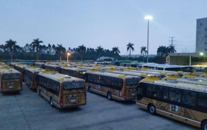 La Paz Bus reclutará más de 360 trabajadores para las cuatro nuevas rutas del Pumakatari
