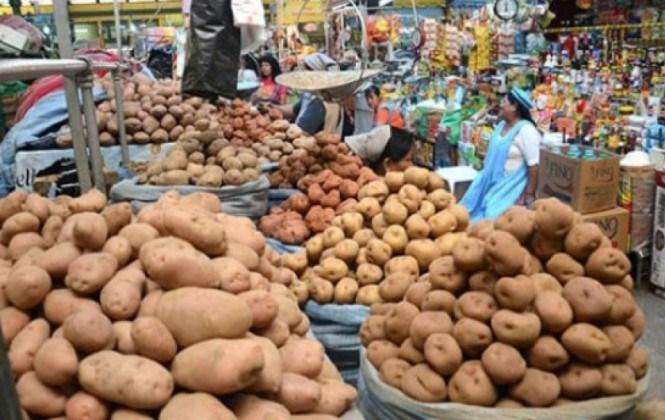 Bolivia requiere 36 mil toneladas de papa para abastecer su mercado interno