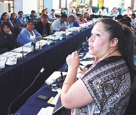 Informe. La liquidadora del Fondioc, Lariza Fuentes, en una exposición.