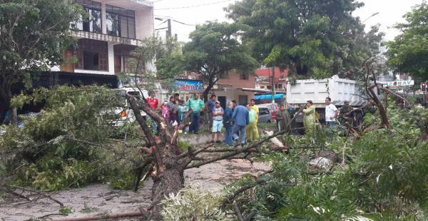 Ráfagas de viento y una intensa tormenta dejaron graves daños materiales en Yacuiba