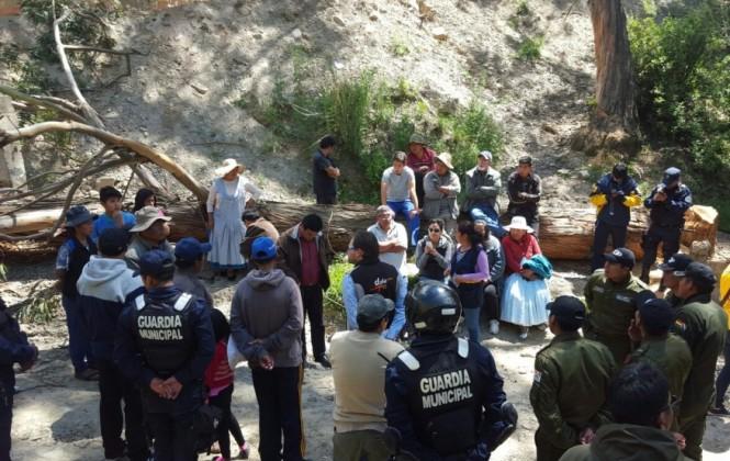 Operativo de la Alcaldía impidió tala de árboles ordenada por supuestos loteadores