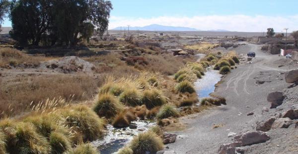 La autoridad edil de esa comuna chilena denunció que las empresas privadas usan el agua y la contaminan.