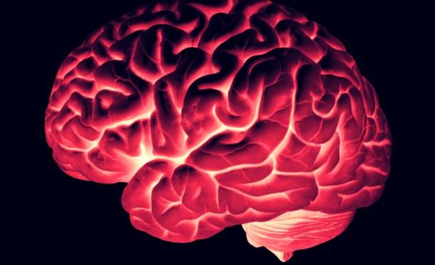 Los efectos del LSD en nuestro cerebro, en imágenes