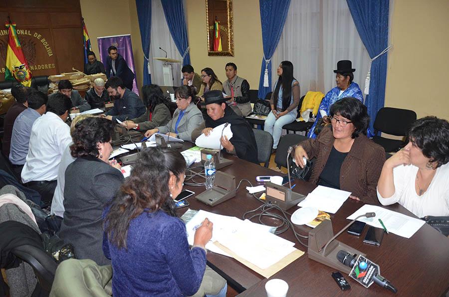 Comisión Mixta de Constitución (1)